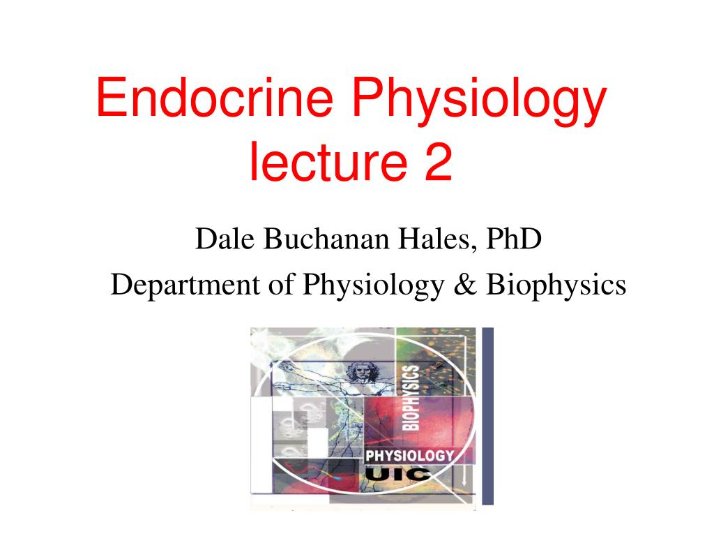 endocrine physiology lecture 2 l.