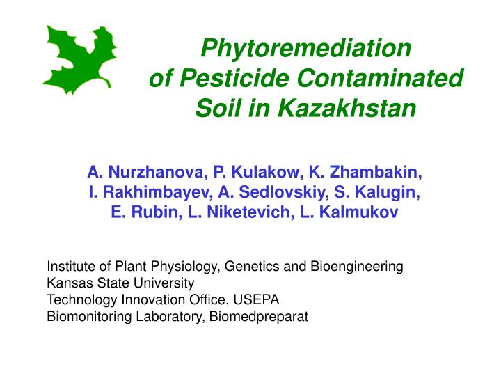 phytoremediation of pesticide contaminated soil in kazakhstan n.