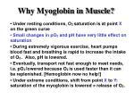 why myoglobin in muscle