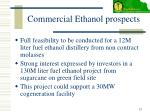 commercial ethanol prospects