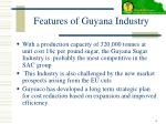 features of guyana industry