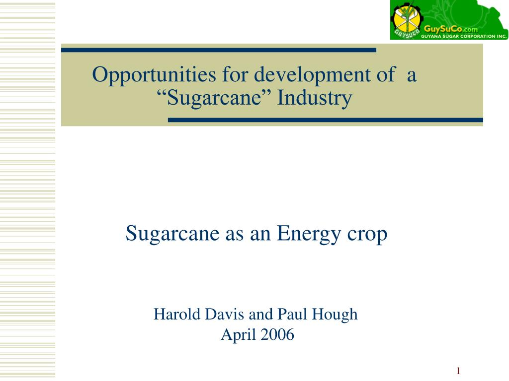 opportunities for development of a sugarcane industry l.