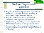 skeldon cogeneration operation