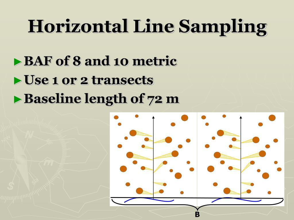 Horizontal Line Sampling