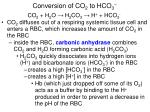 conversion of co 2 to hco 3