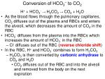 conversion of hco 3 to co 2