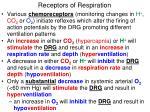 receptors of respiration