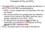 transport of co 2 as hco 3