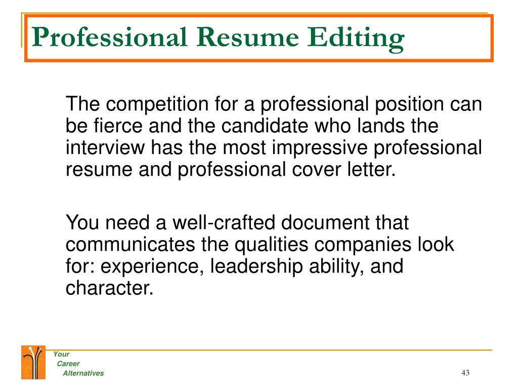 Professional Resume Editing