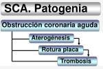 sca patogenia