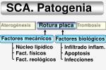 sca patogenia13
