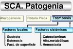 sca patogenia14