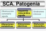 sca patogenia15