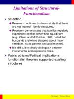 limitations of structural functionalism