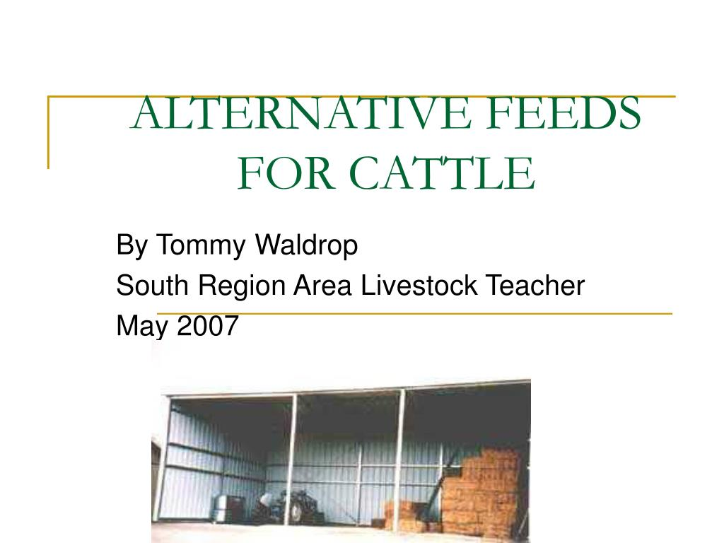 alternative feeds for cattle l.