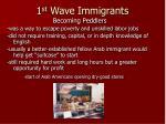 1 st wave immigrants16