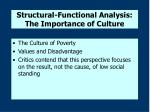 structural functional analysis the importance of culture