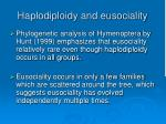haplodiploidy and eusociality86