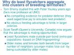 why do least flycatchers aggregate into clusters of breeding territories