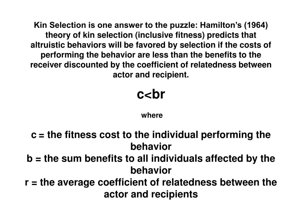 Kin Selection is one answer to the puzzle: Hamilton's (1964) theory of kin selection (inclusive fitness) predicts that altruistic behaviors will be favored by selection if the costs of performing the behavior are less than the benefits to the receiver discounted by the coefficient of relatedness between actor and recipient.