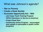 what was johnson s agenda
