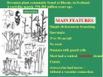 devonian plant community