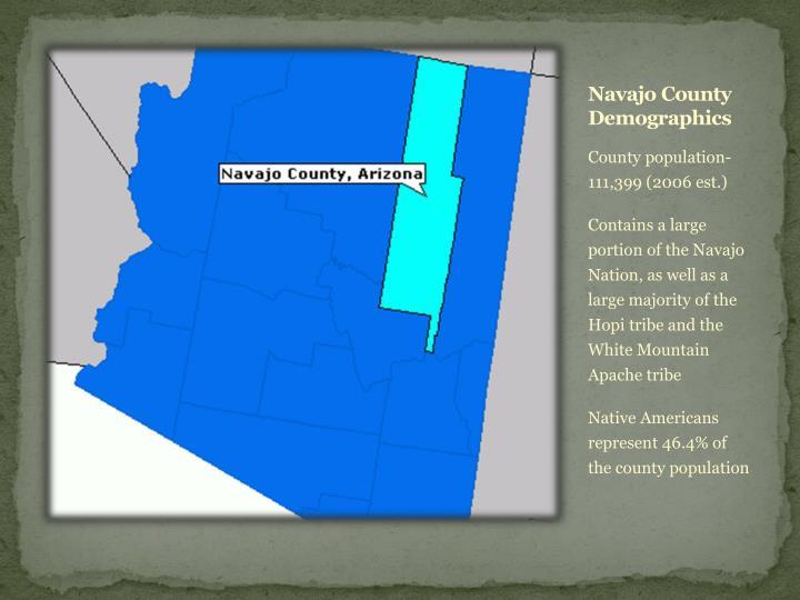 Navajo county demographics