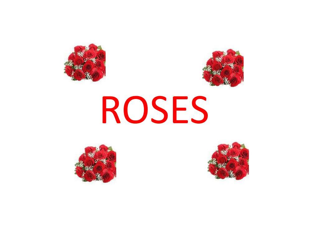 roses l.