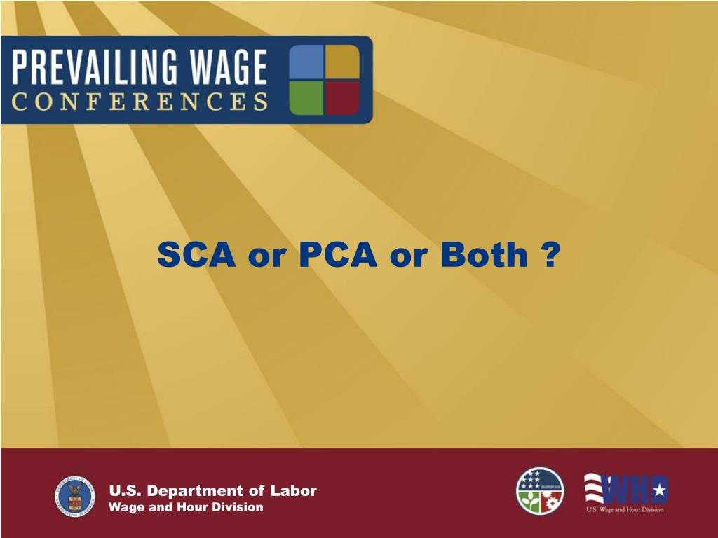 SCA or PCA or Both ?