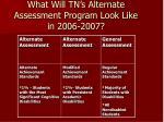 what will tn s alternate assessment program look like in 2006 2007