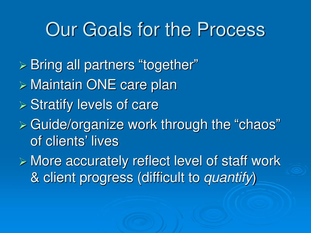 Our Goals for the Process