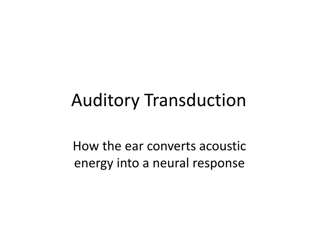 auditory transduction l.