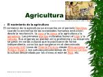 agricultura4