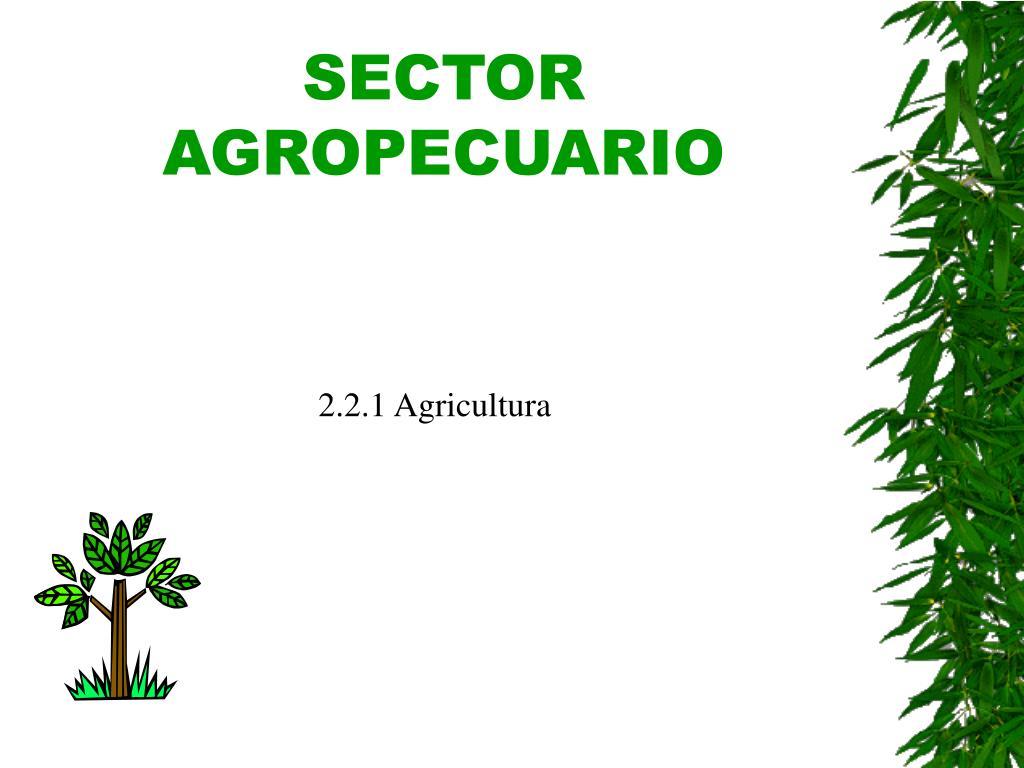 sector agropecuario l.