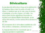 silvicultura27