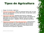 tipos de agricultura16
