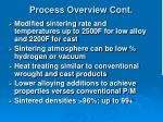 process overview cont