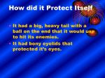 how did it protect itself