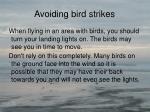 avoiding bird strikes5