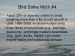 bird strike myth 43