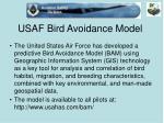 usaf bird avoidance model
