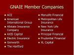 gnaie member companies