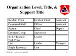 organization level title support title