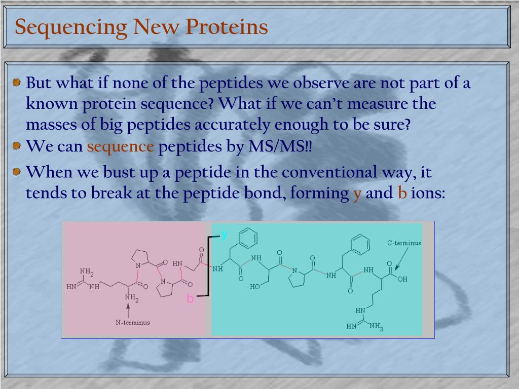 Sequencing New Proteins