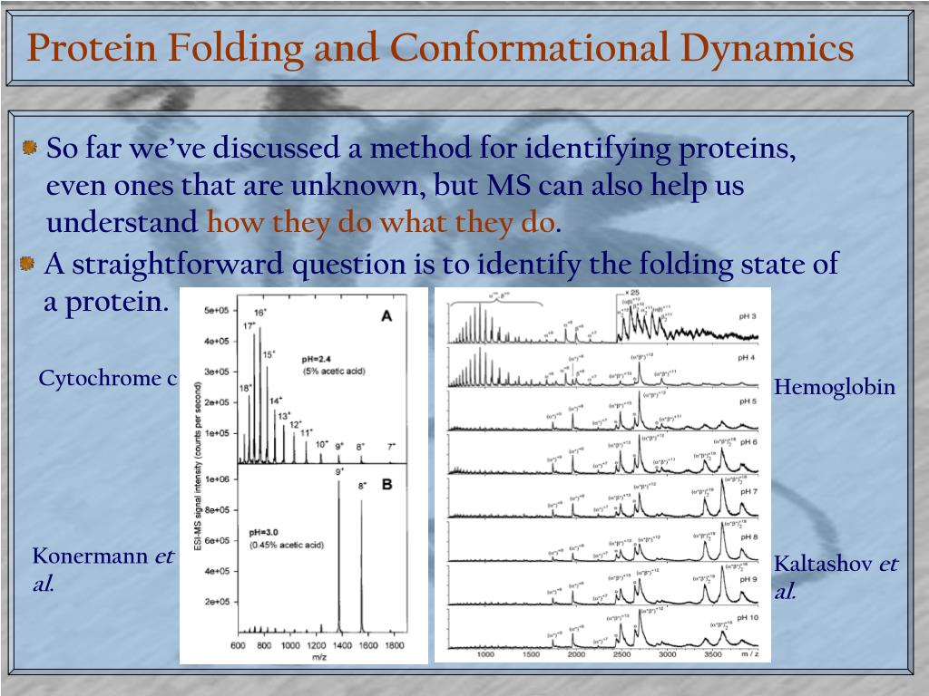 Protein Folding and Conformational Dynamics