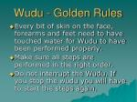wudu golden rules