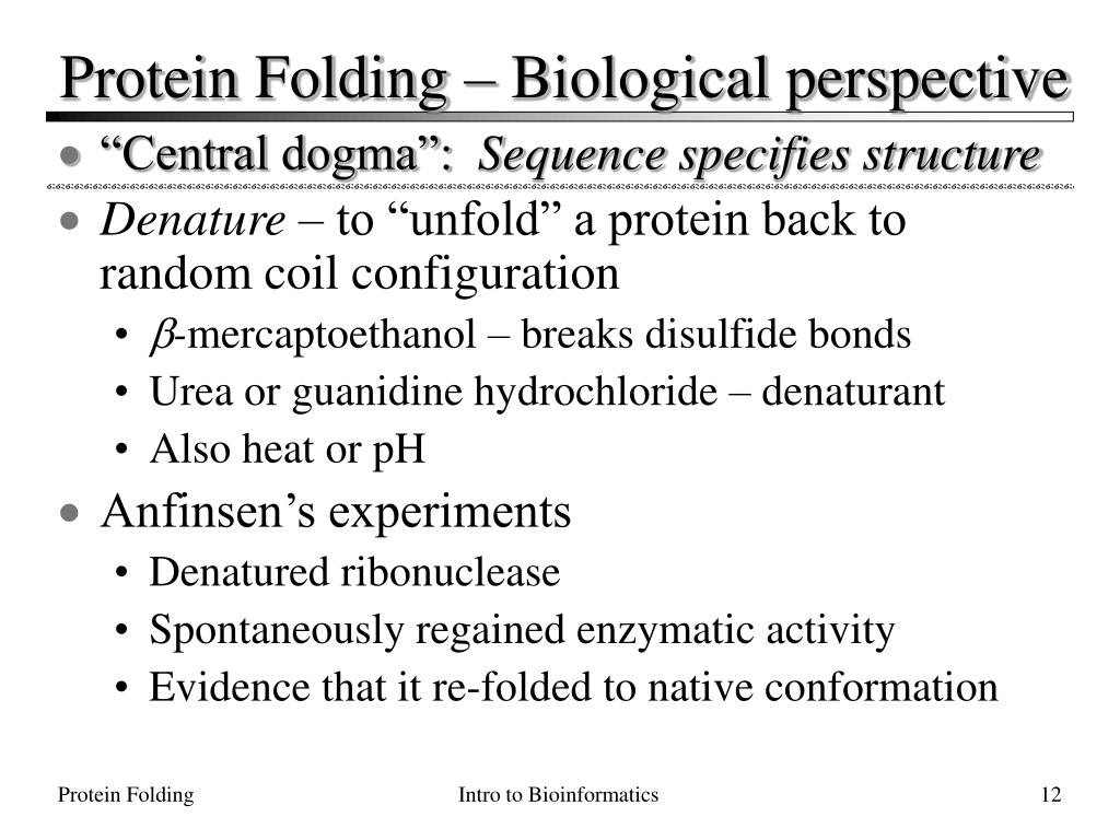Protein Folding – Biological perspective