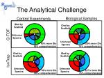the analytical challenge3