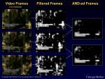 video frames filtered frames and ed frames