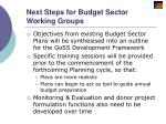 next steps for budget sector working groups